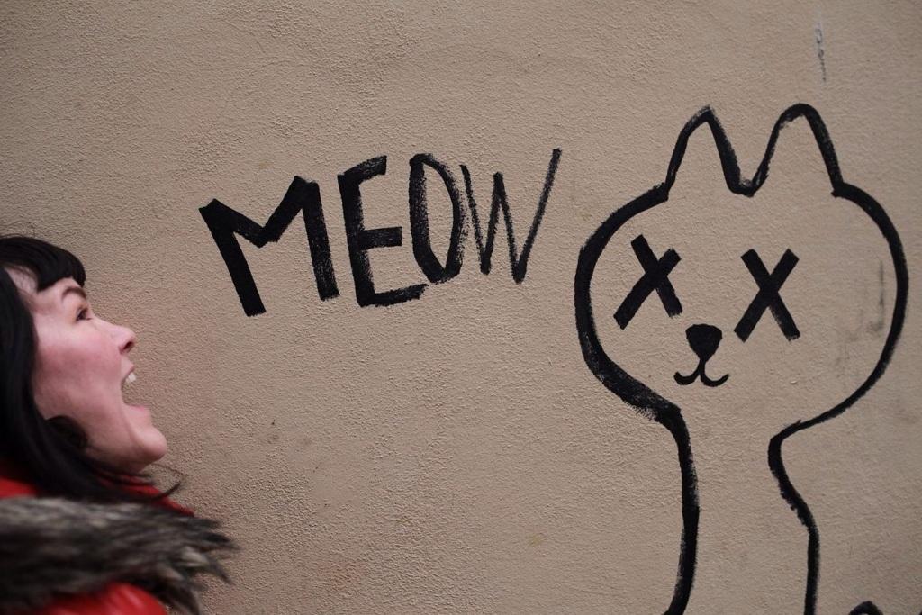karuski meow
